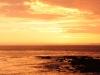 vancouver-island-sunset